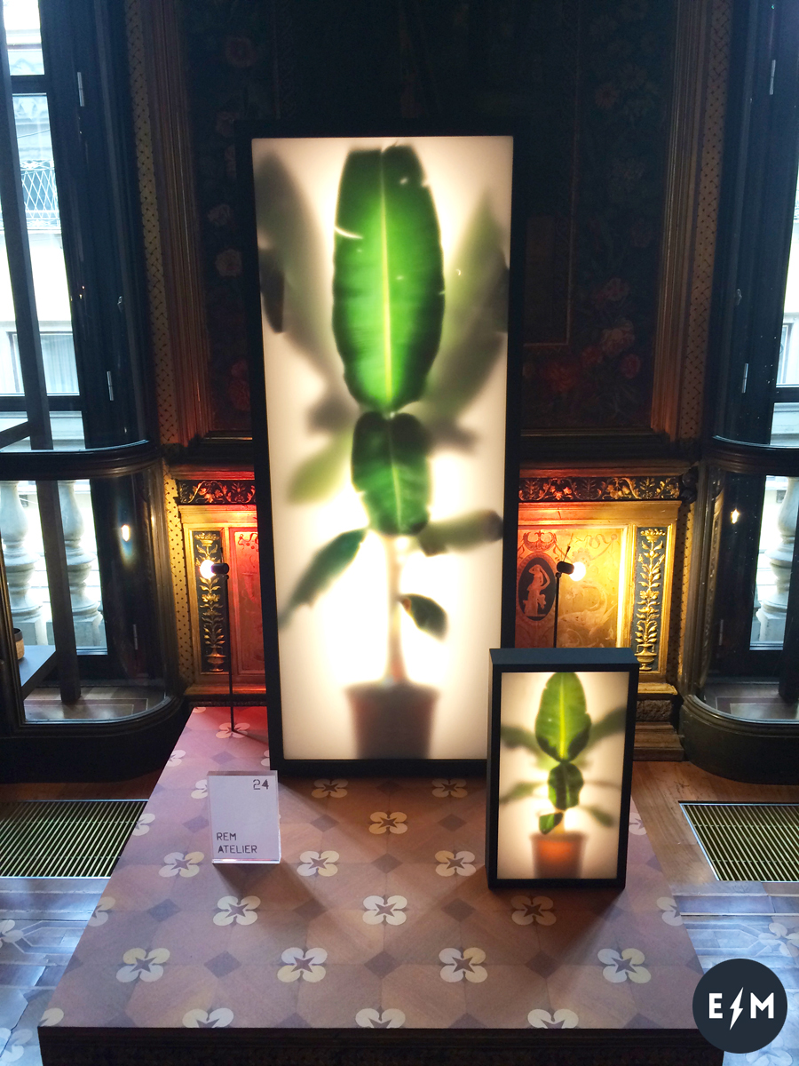 Fuorisalone 2017 - Masterly, The Dutch in Milano - Growing Plants Indoor by Rem Atelier